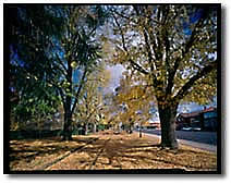 Bathurst in Autumn